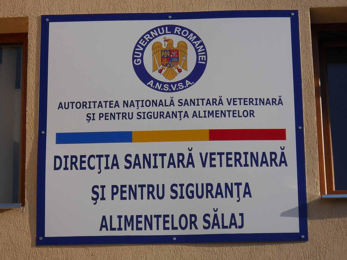 Sediu DSVSA SJ